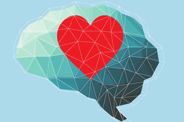 cuore cervello 2